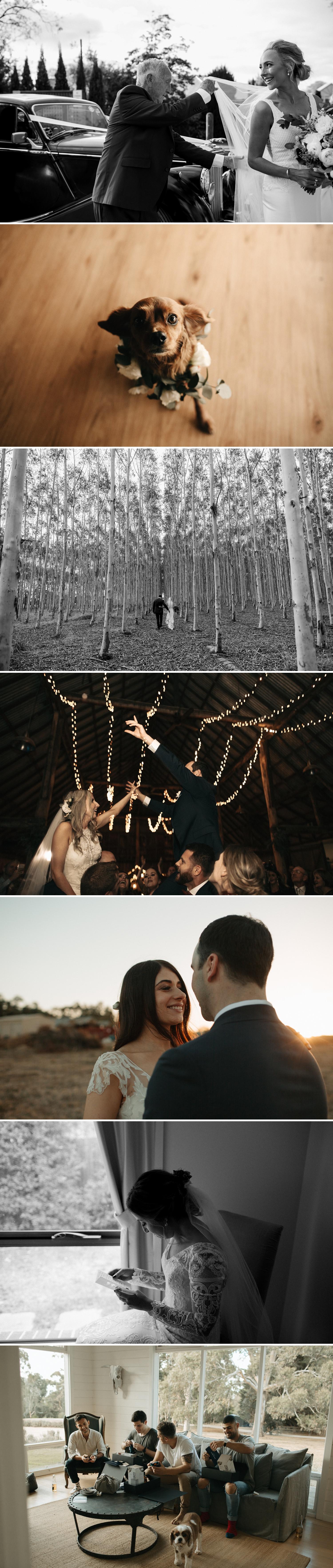 relaxed-wedding-photographer-melbourne_0020.jpg