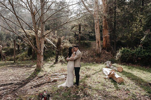 This awesome little valley wedding is currently situated on my editing screen and I'm loving it! . . . . . .  #thevisualcollective #greenweddingshoes #melbournephotographer #melbourneweddingphotographer #folkportraits #nzweddingphotographer #australianphotographer #weddingdress #weddingdetails #bridefashion #documentaryphotography #photojournalism #weddingphotojournalism #newyorkphotographer #weddinginspo #lovestory #letsgosomewhere #engaged #makeportraits #bride #junebugweddings#melbournephotography#melbournefolk #peoplescreatives #beachwedding #radlovestories #belovedstories #loveandwildhearts #justalittleloveinspo
