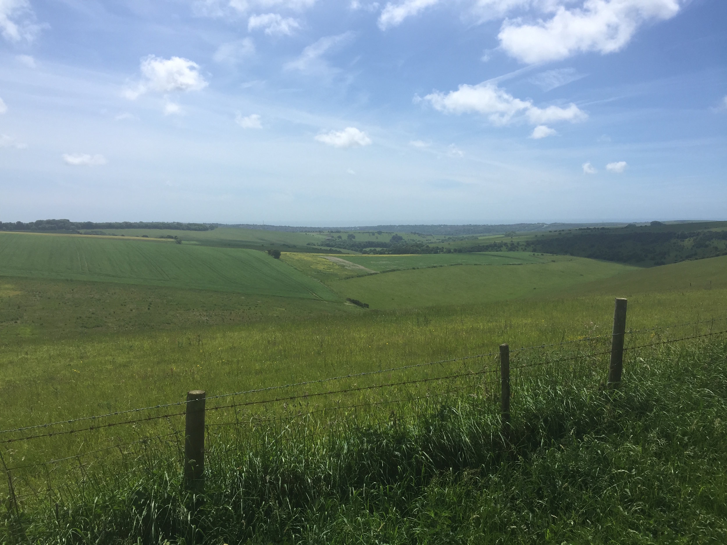 south downs.jpg