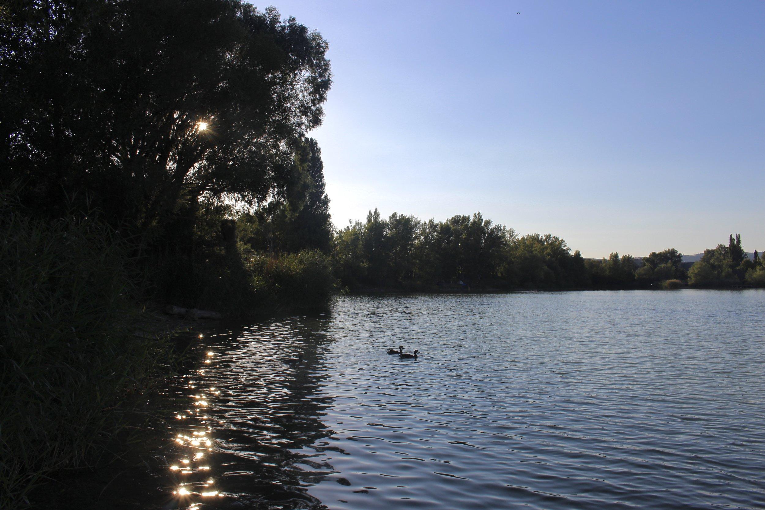 Zlaté Piesky (Braitslava, Slovakia)
