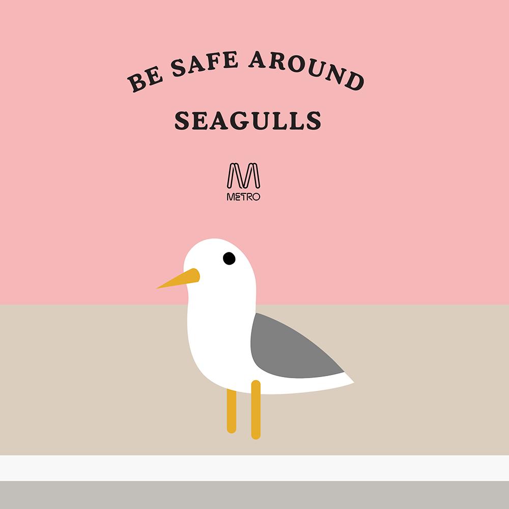 Seagulls.png