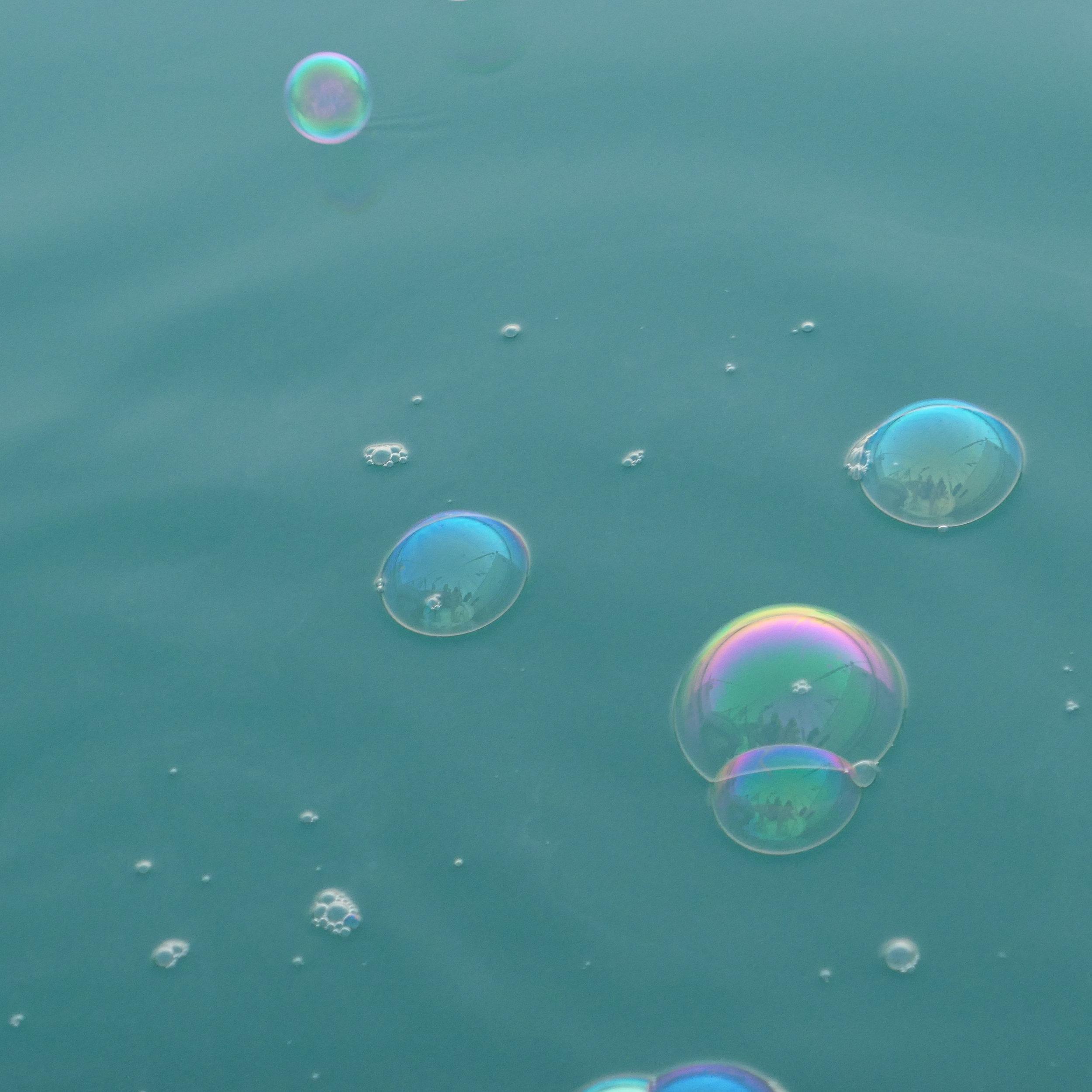 bubb.jpg
