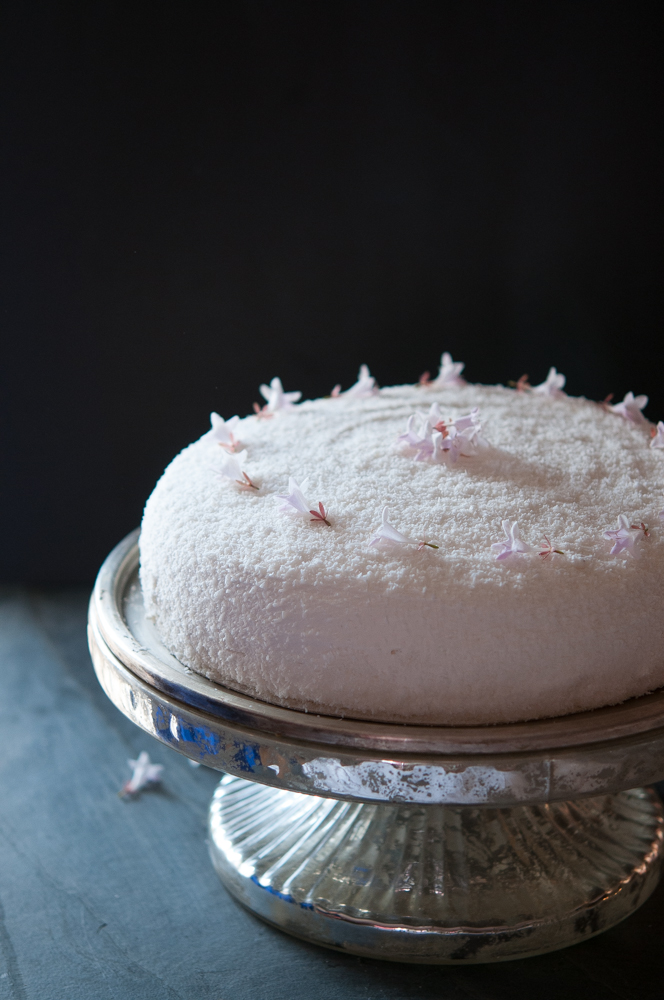 gluten-free-chocolate-coconut-cake.jpg