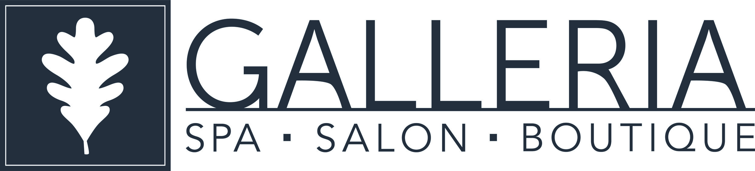 Galleria Logo 24 Blue Grey Horiz CMYK MC1.jpg