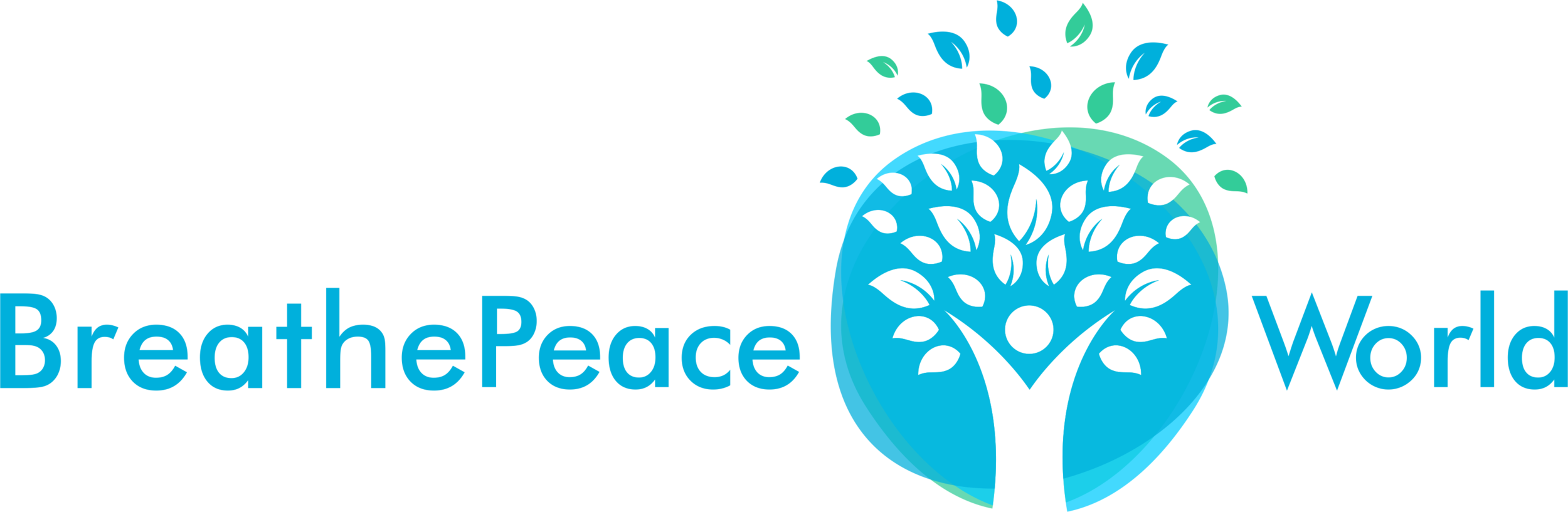 Logo_C_PNG.png