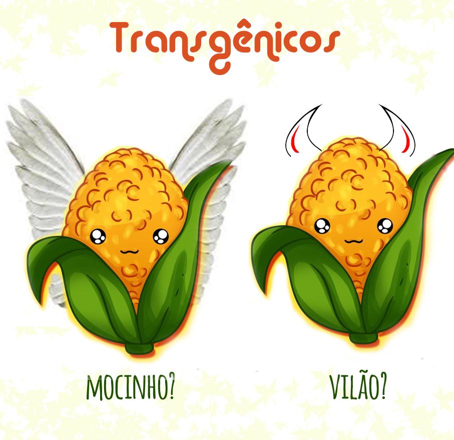 transgenicos2.jpg