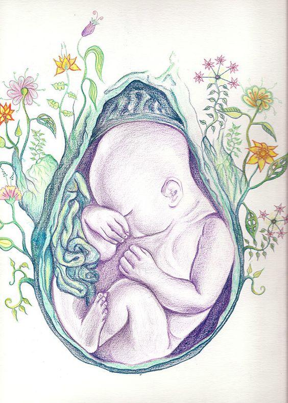 gravide1.jpg