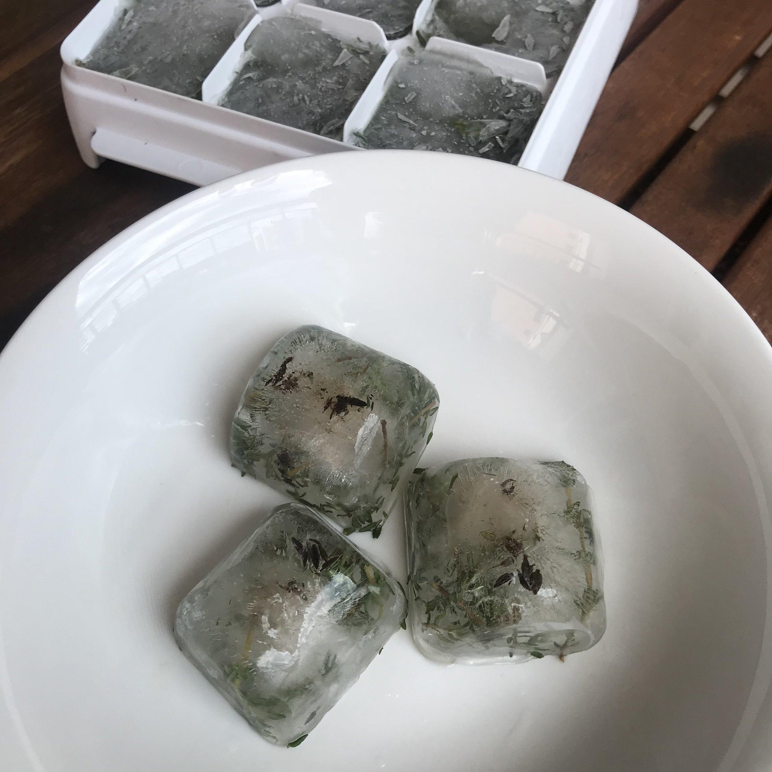 cubinhos de gelo de tomilho