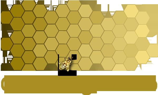 GDS Logo_Edited.png