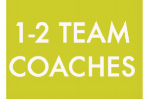 TEAM COACHES are caring adults who become a consistent, compassionate presence in the life of their team's youth participant.  Along with the TEAM ANCHOR, they support the youth participant in reaching their goals and getting involved in the community.