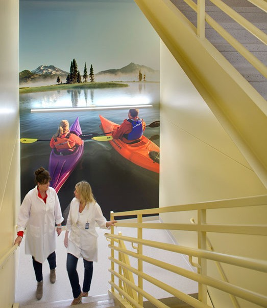 Large Scale Custom Graphics Healthcare Environment