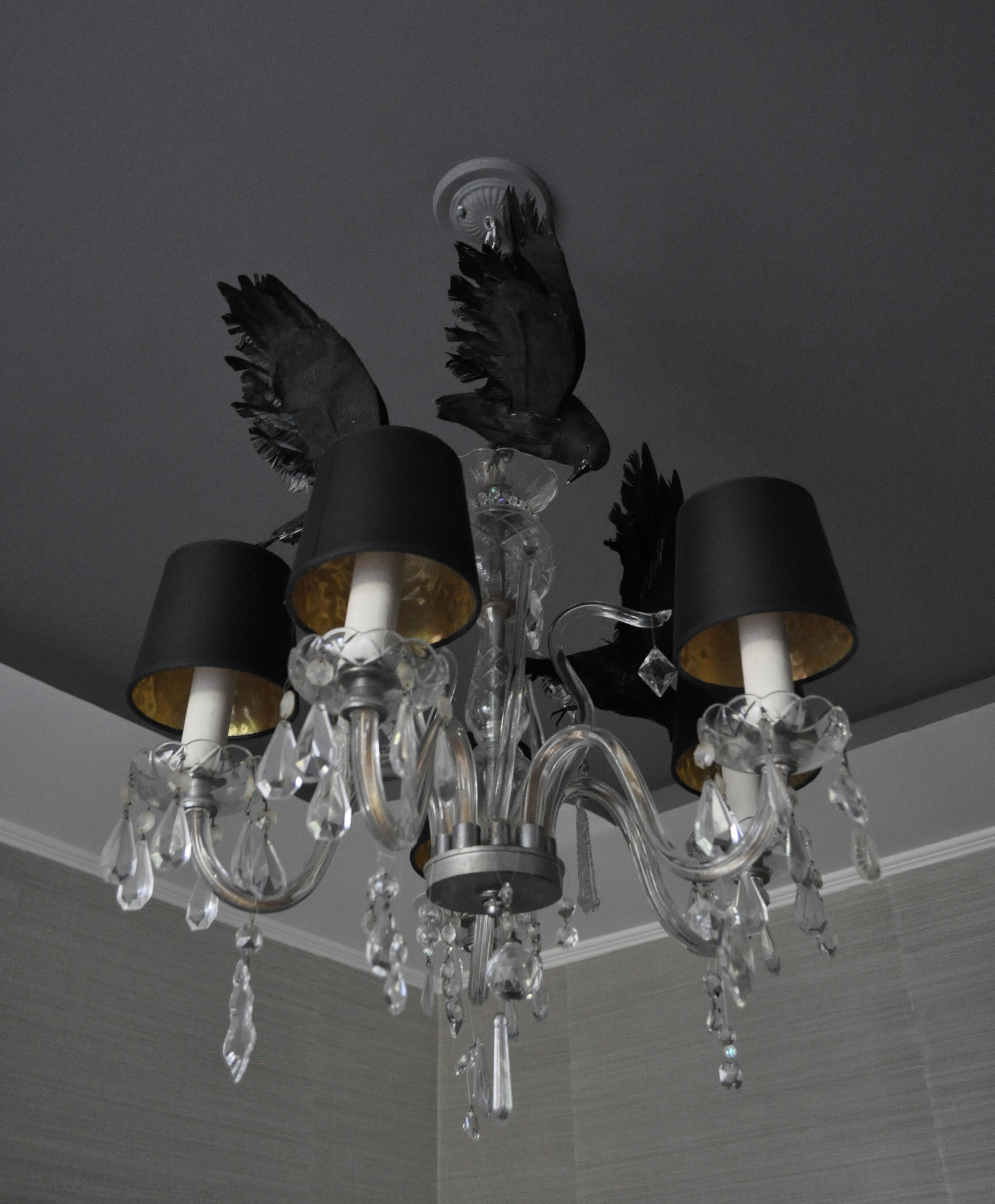 Crows circling the chandelier