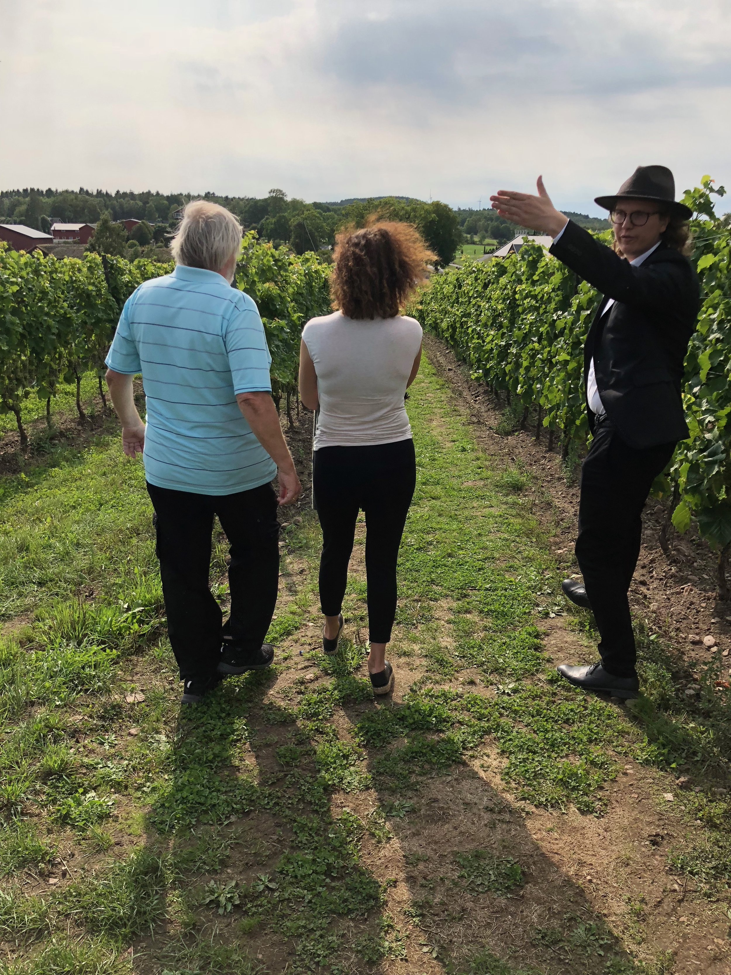 Touring the vineyard, just a couple of weeks before harvest