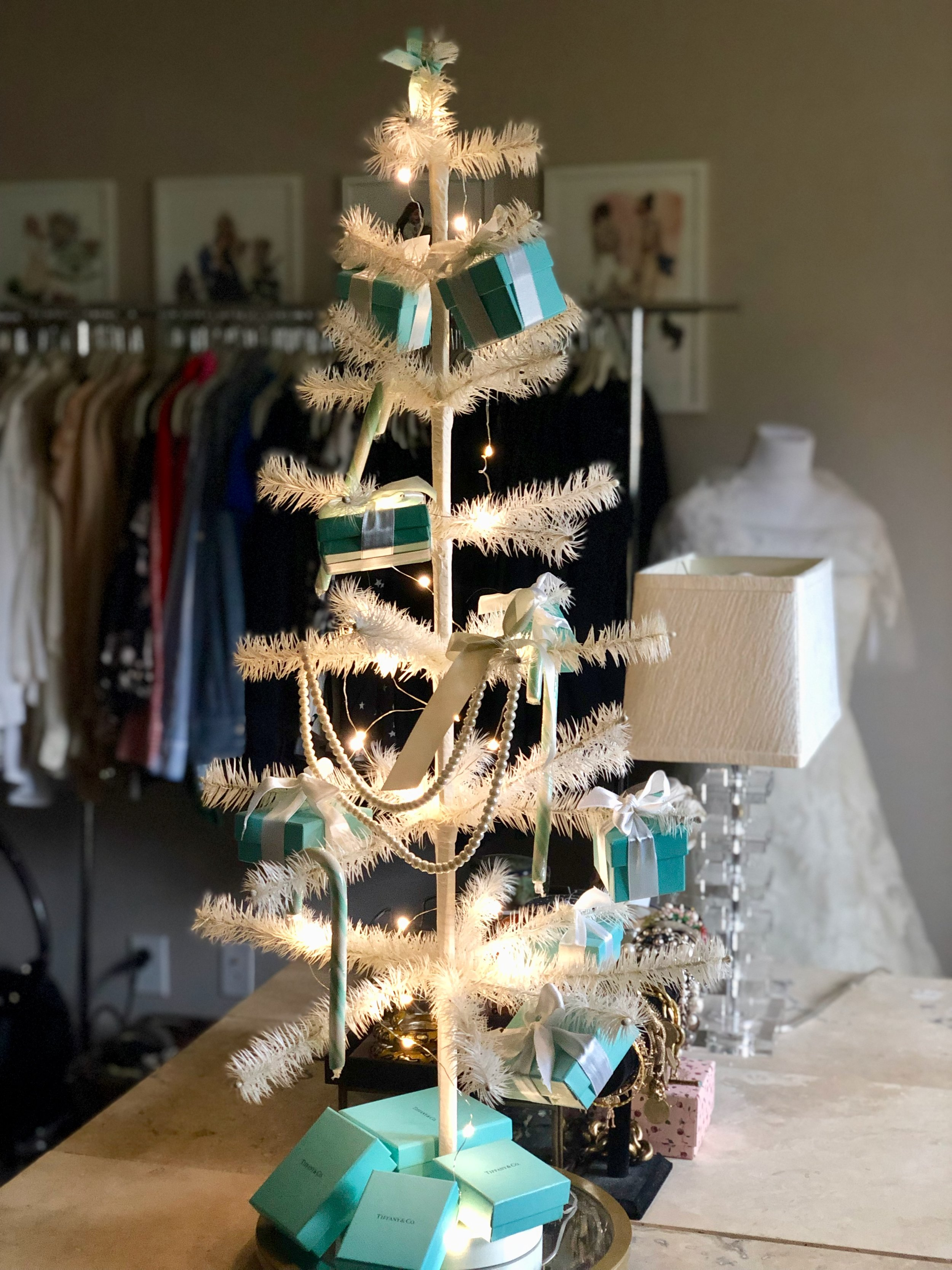 Little Tiffany feather tree in my closet