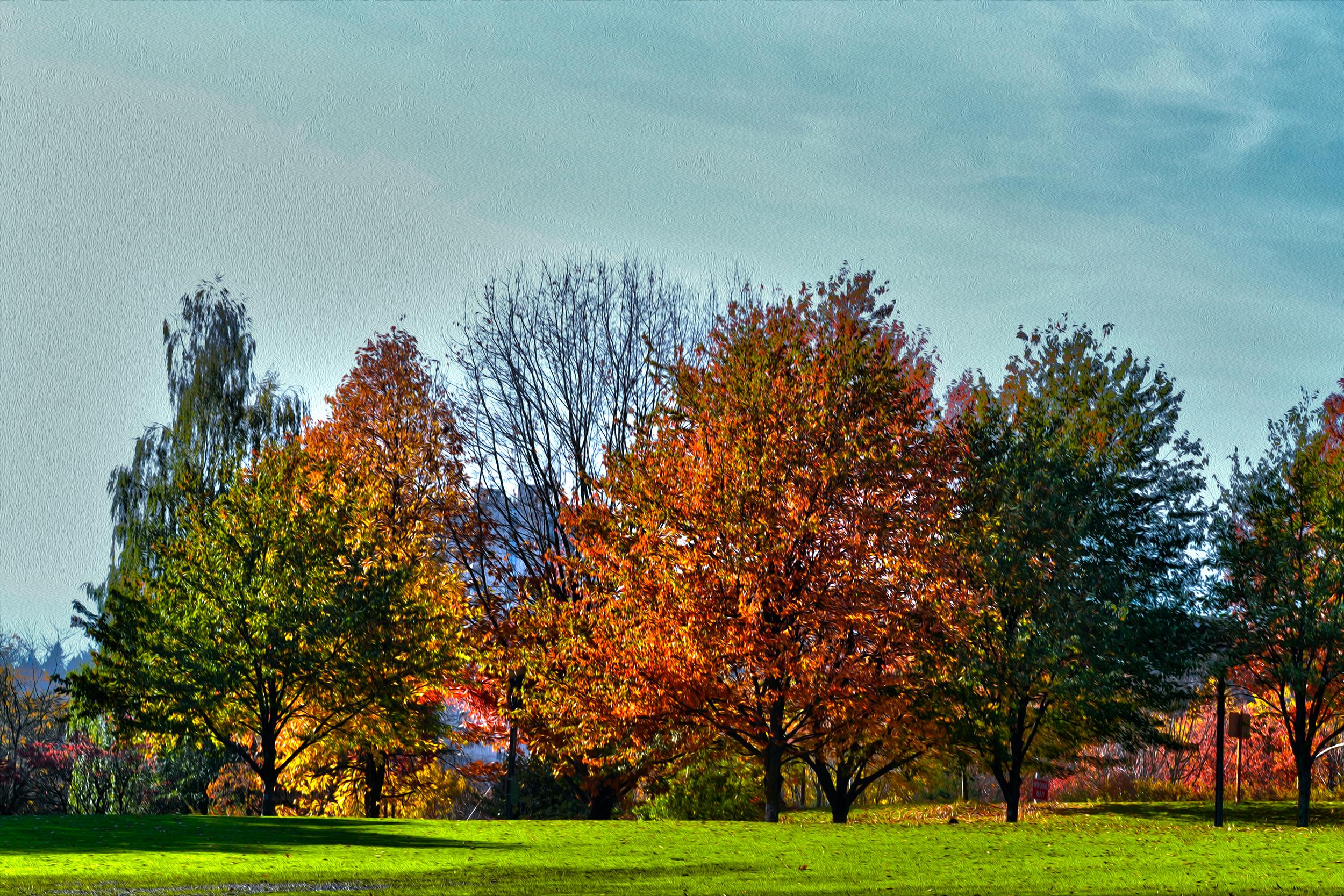 powell-landscape-16.jpg