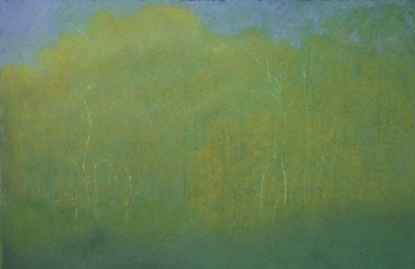 White Weave , pastel on paper, 40x28 inches, 2003