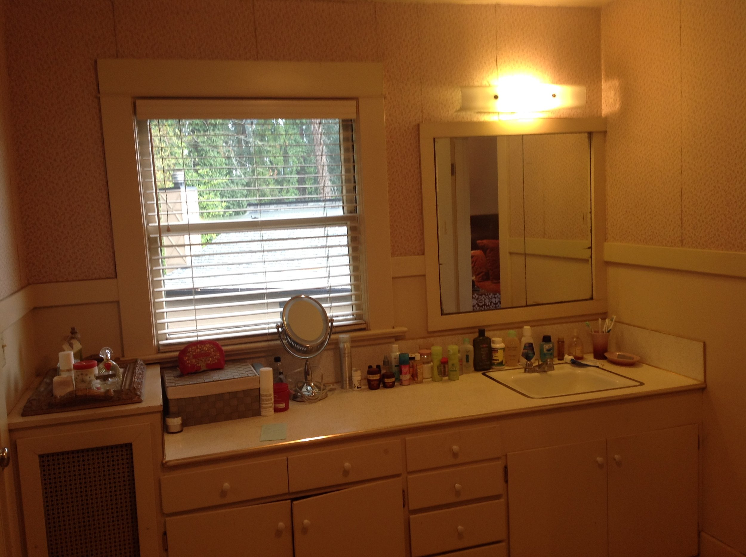 5vanity area before.jpg