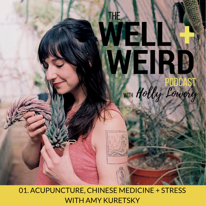 CHINESE-MEDICINE-ACUPUNCTURE-AND-THE-ELEMENTS-WITH-AMY-KURETSKY-4.png