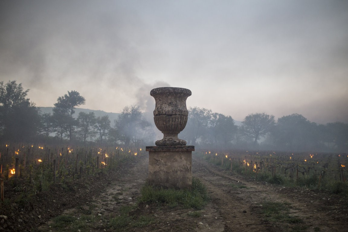 Trinoro vineyard urn with torches dawn Spring 2019.jpg
