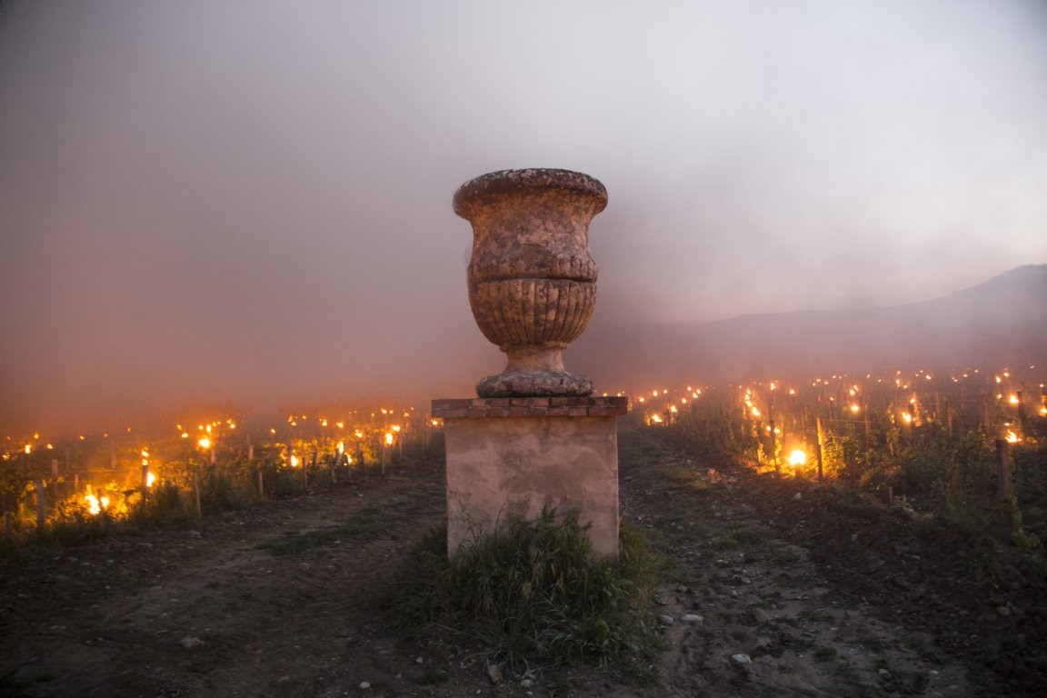 Trinoro vineyard urn with torches Spring 2019.jpg