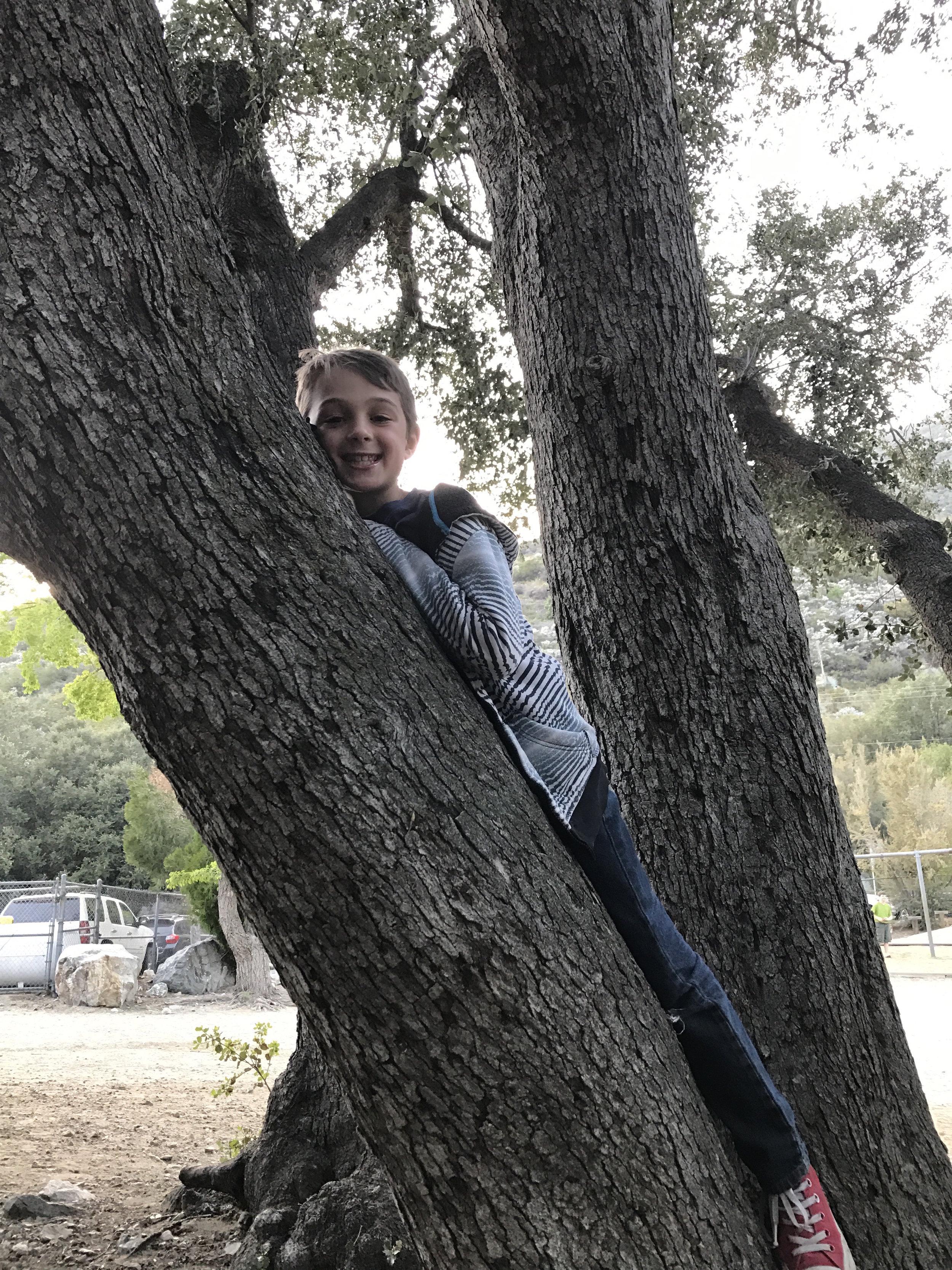 tree hugger Andrew .jpg