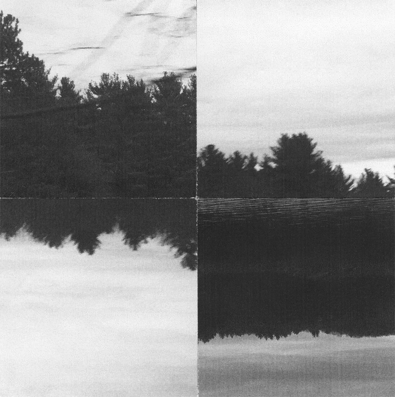 JuxtaposedLandscape_Crop&Trim.png