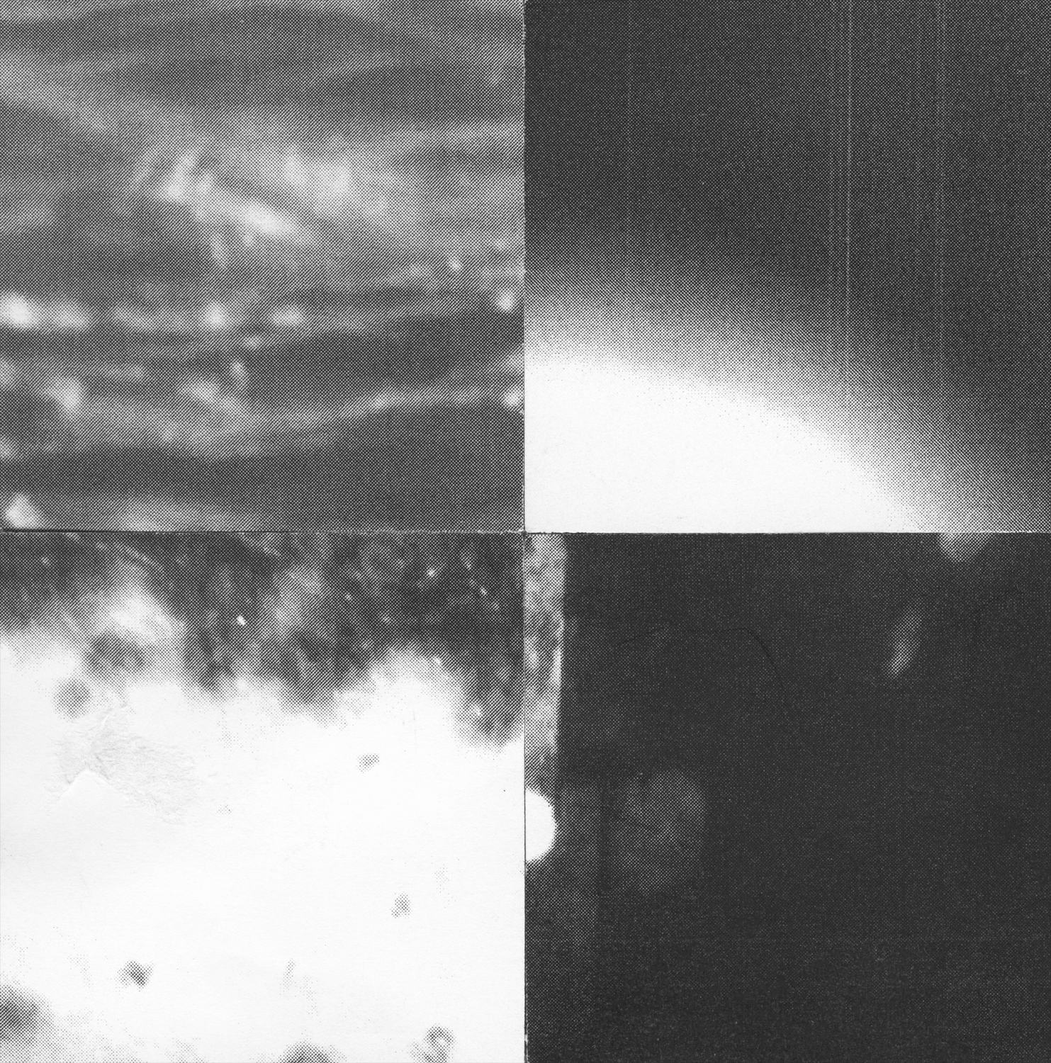 Square_Collages_Earthglow_Crop&Trim.png
