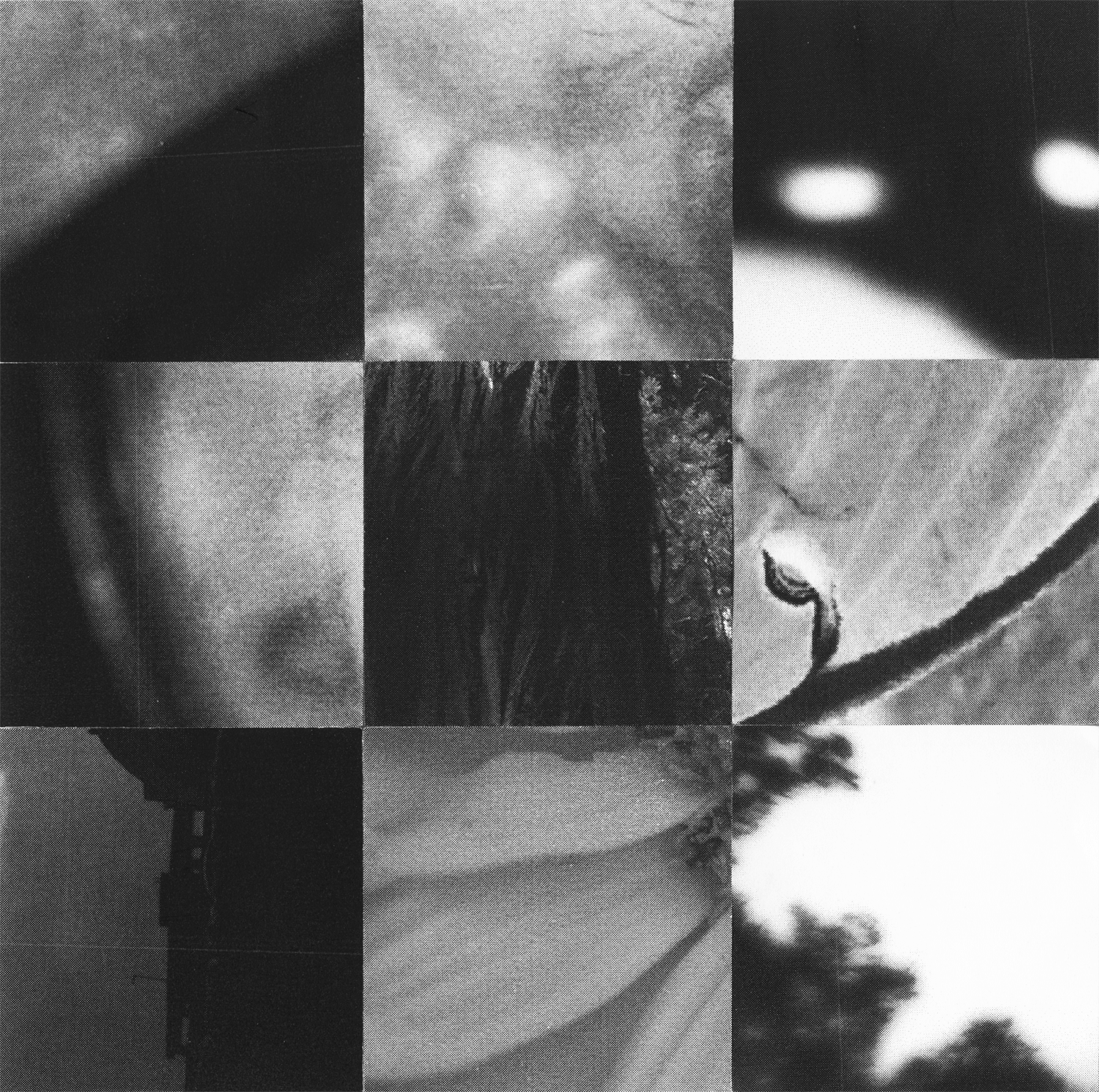 Square_Collages_Zoetrope_Crop&Trim.png