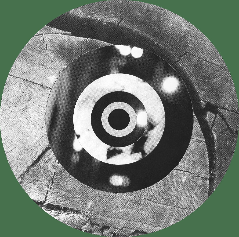 Circle_Collages_Redwood_Crop&Trim.png
