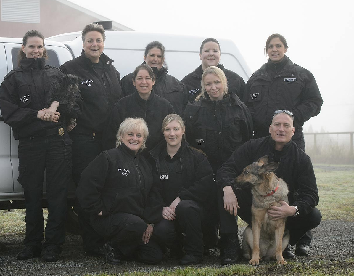 staff-cid-in-uniform-group-bcspca-brand.jpg