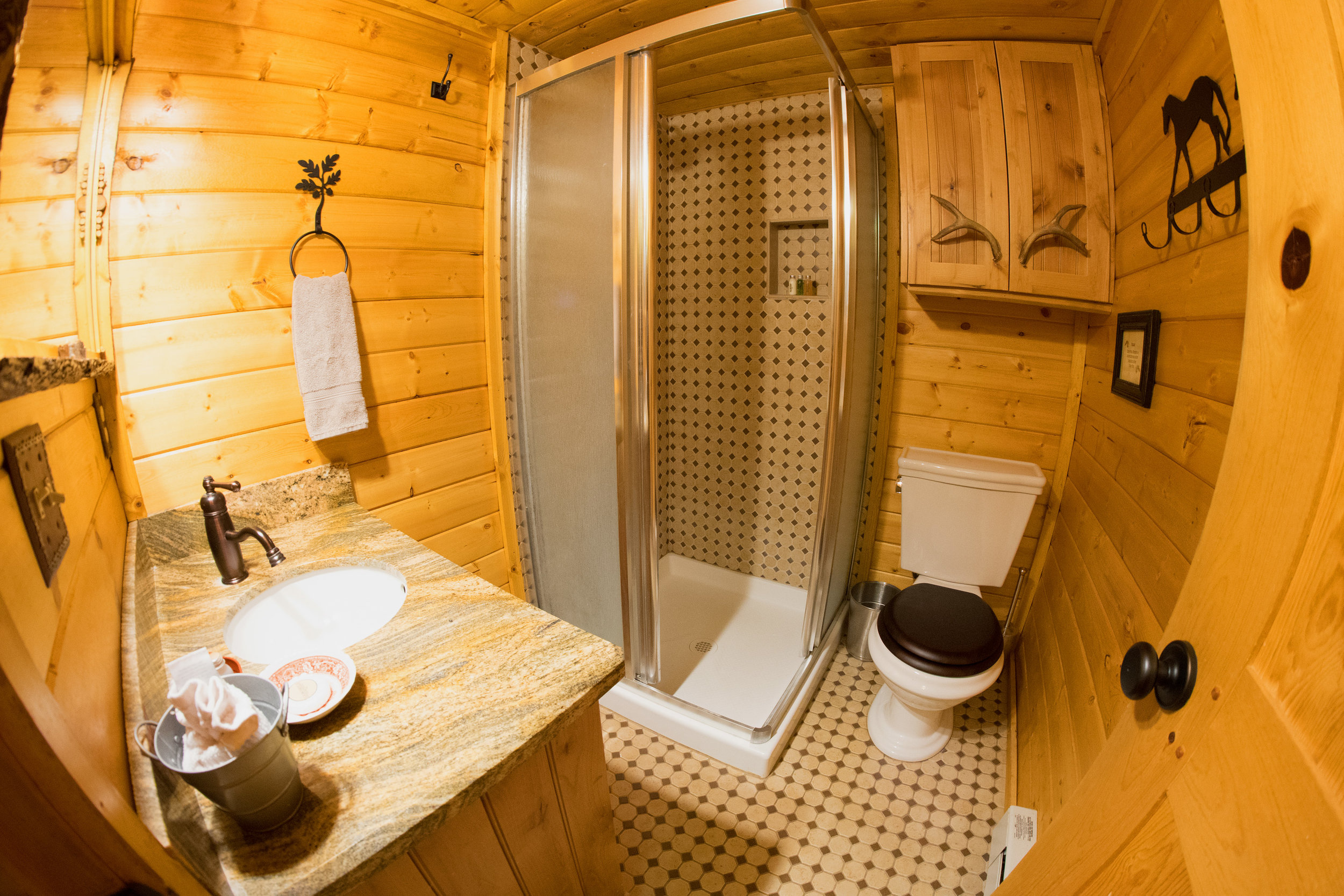 Acorn Downstairs Shower and Vanity 2017.jpg