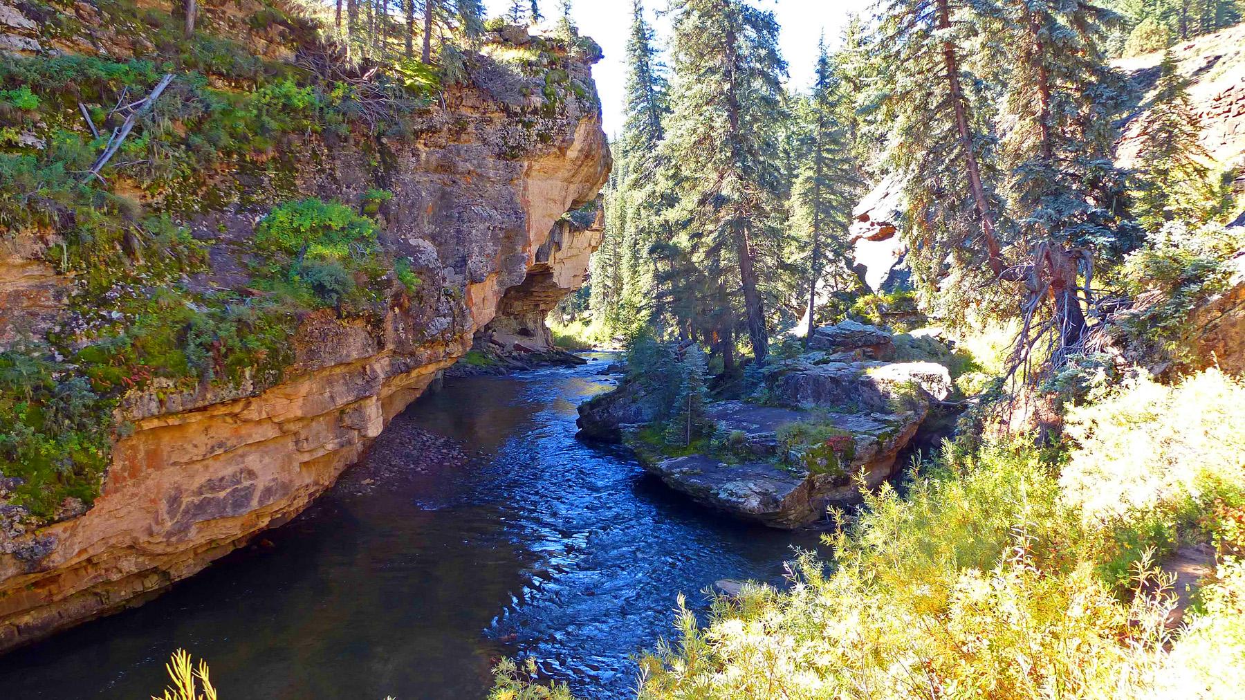 Piedra-River-Trail-4.jpg