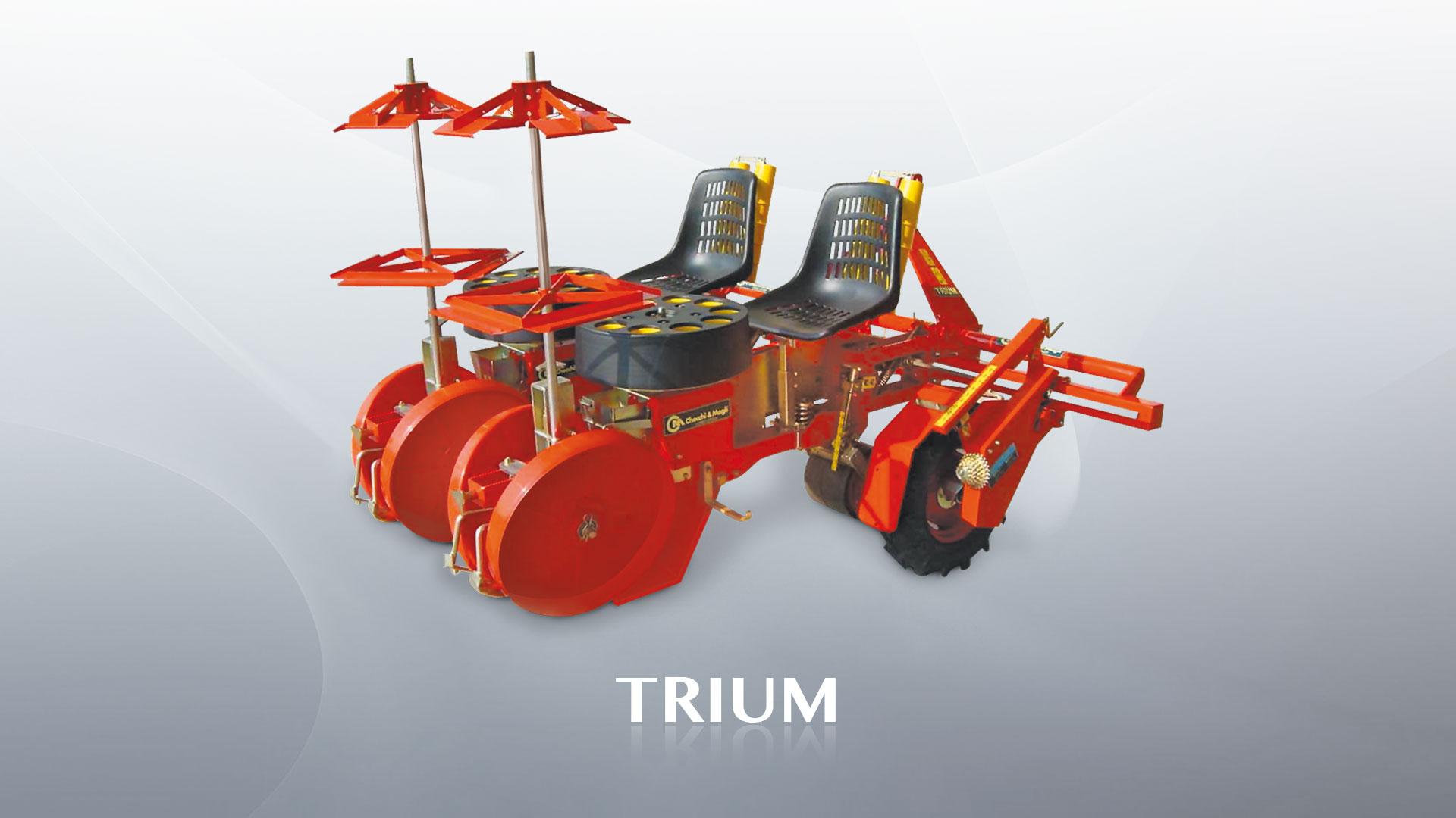 checchi-magli-trium