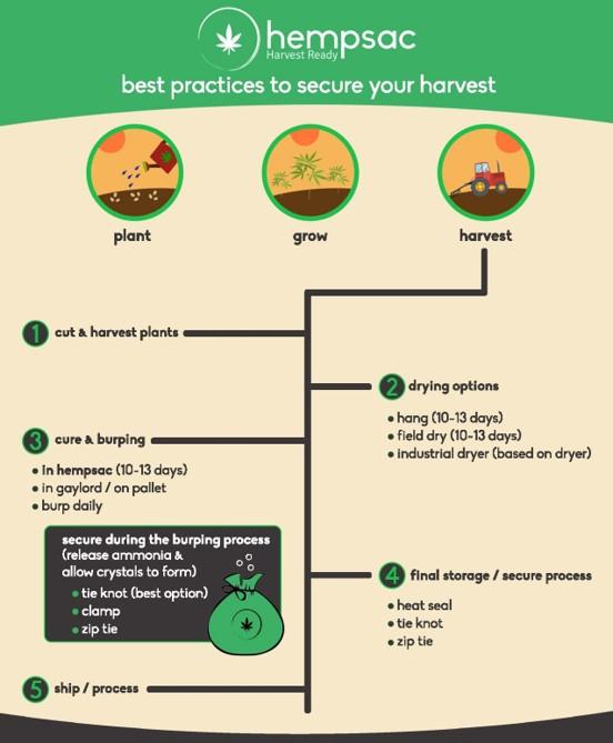 hempsac_flyer_best_practices.jpg