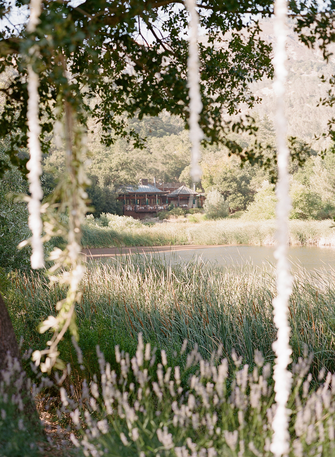 Calistoga Ranch Wedding    View Gallery