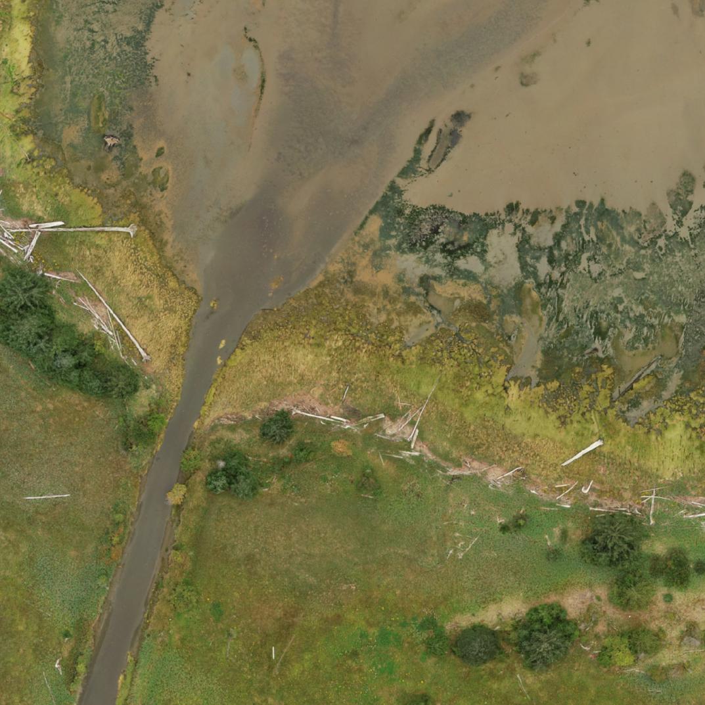 Salmon River Ortho Snip.PNG