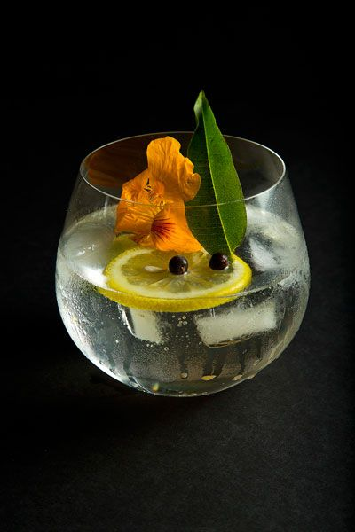 beverage training: gin & tonic, the perfect serve