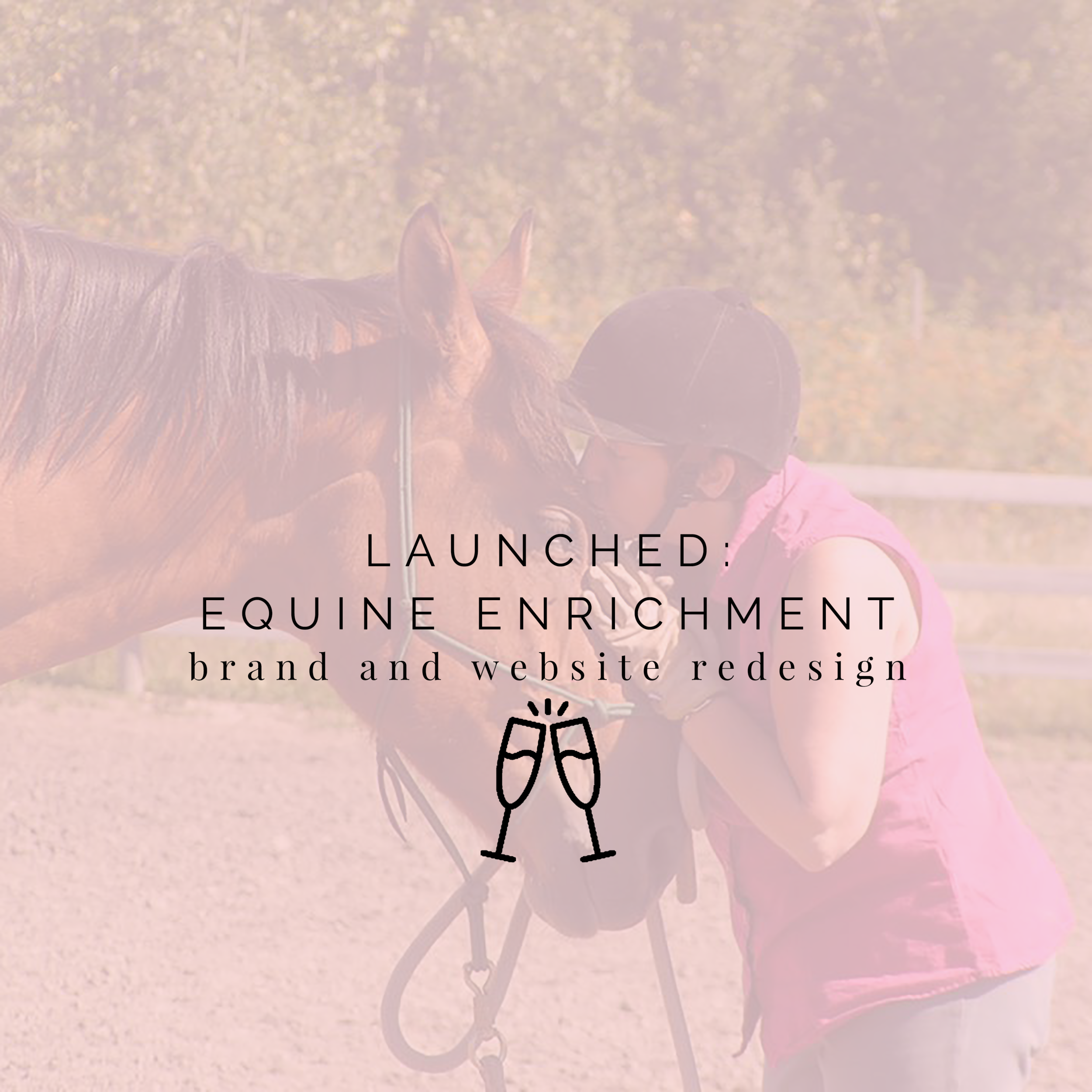Launched Equine Enrichment.png