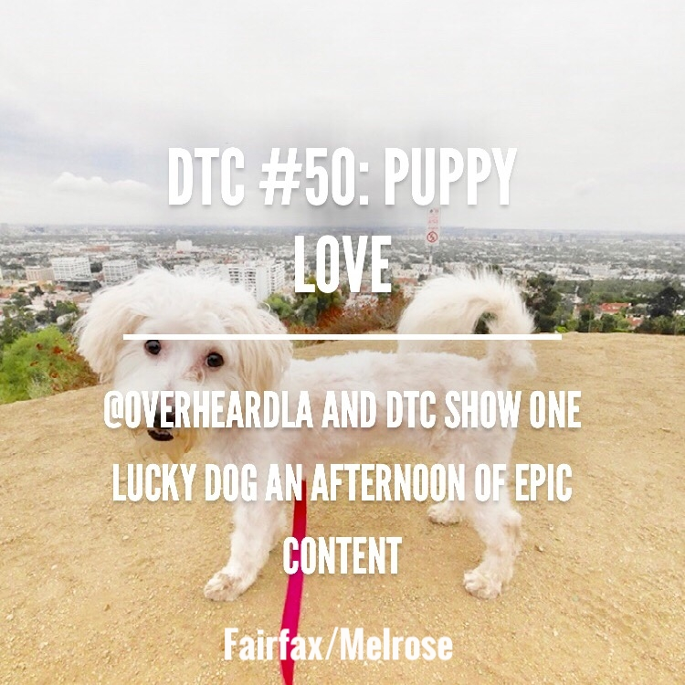 Adopt a puppy for the day from Bark n Birches and take her for a hike up Runyon. After taking some insta shots cruise down to Melroe Trading post to find some gems. Then lunch at The Fat Dog.