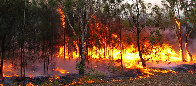 Is your home bushfire safe? Photo credit:  bertknot