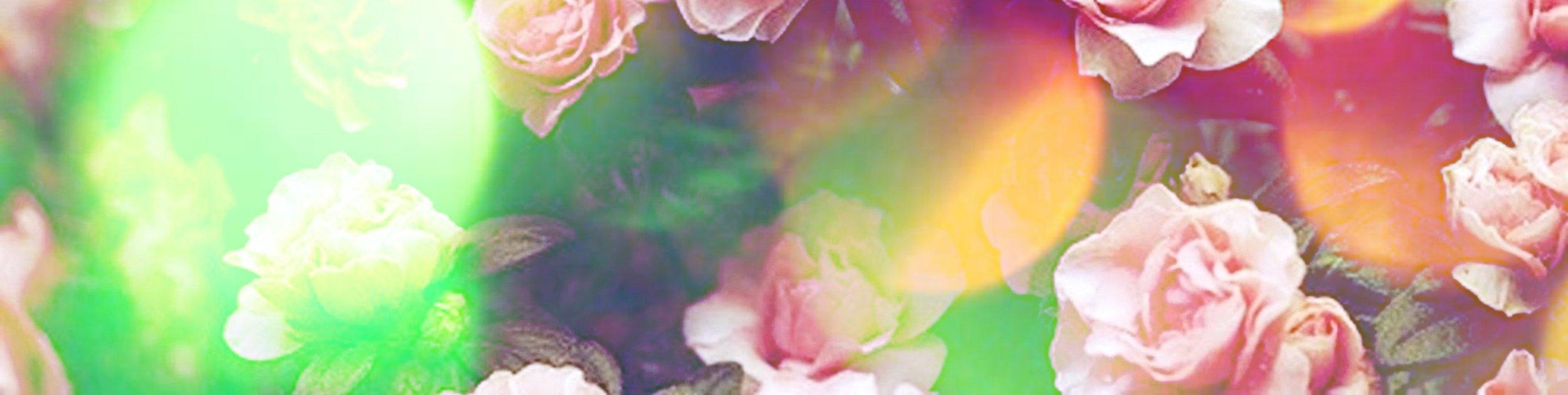 floral-background 2.jpg