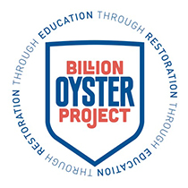 billionoysterproject.jpg