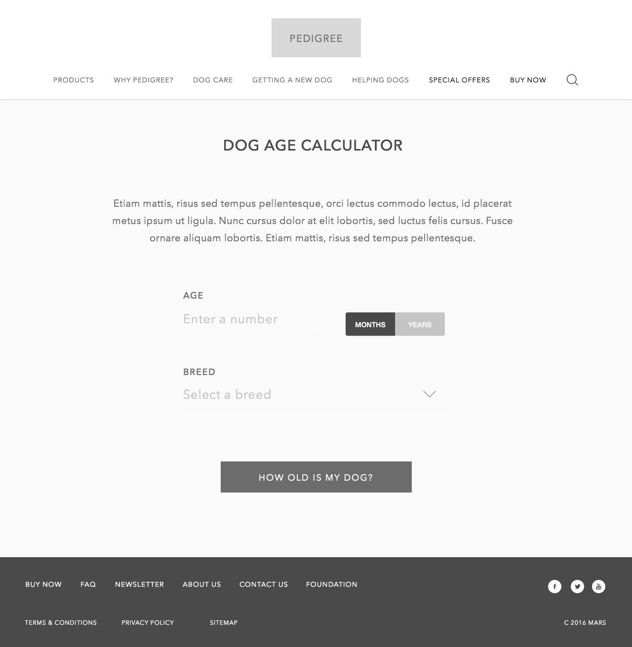 3.4 Dog Age Calculator.png