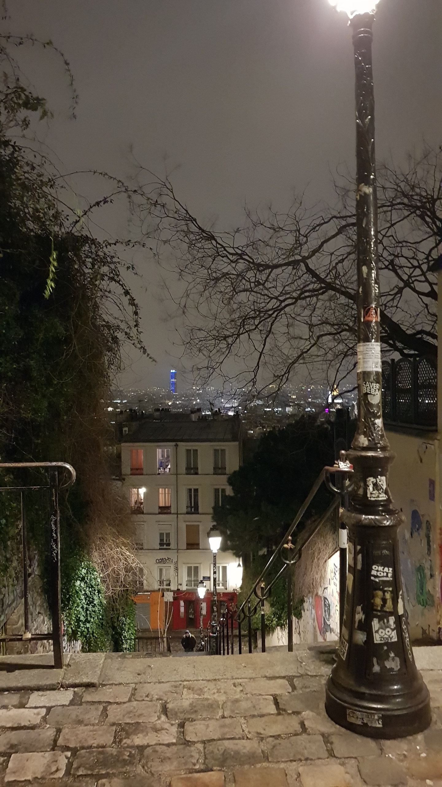 Montmarte was a beautiful neighbourhood, if a bit of a climb. It was a lot more residential and quaint compared to where we were staying in Bastille, and the view of the rest of Paris at night was stunning. I'd love to one day see it in the daylight.