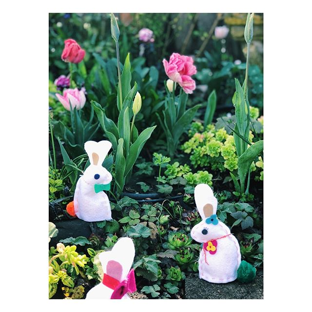 Come and do some hand sewing today with myself and Marguerite @tailortacksandpins at the @childrensmuseumsonomacounty for their monthly Art Jam! We will be sewing up some springtime bunny's!