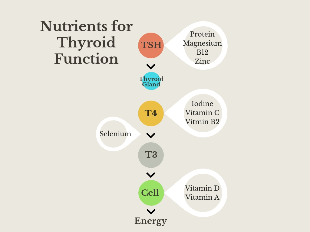 Nutrients for Thyroid Health.jpg