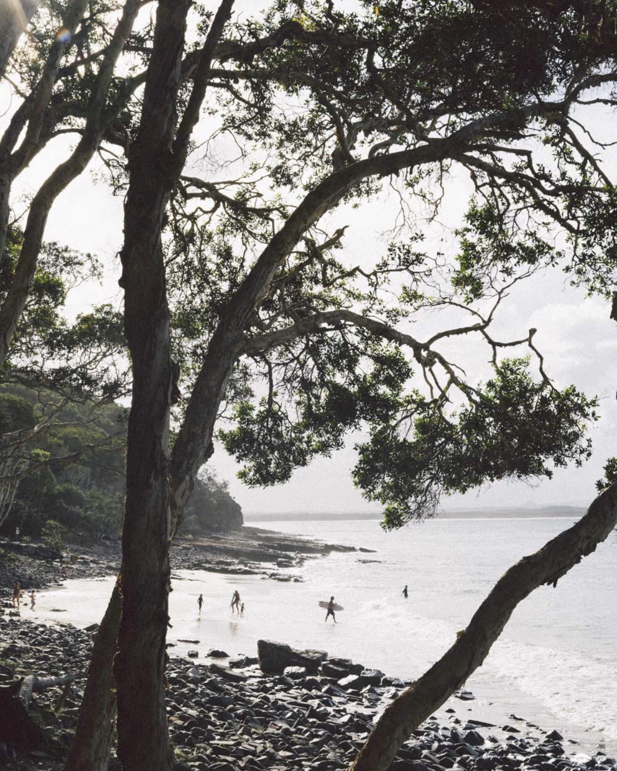 Tea Tree Bay, Noosa National Park  Image: @AimeeDodgePhotography