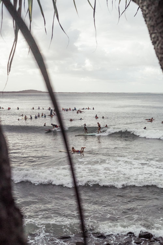 Festival Of Surfing -38.jpg