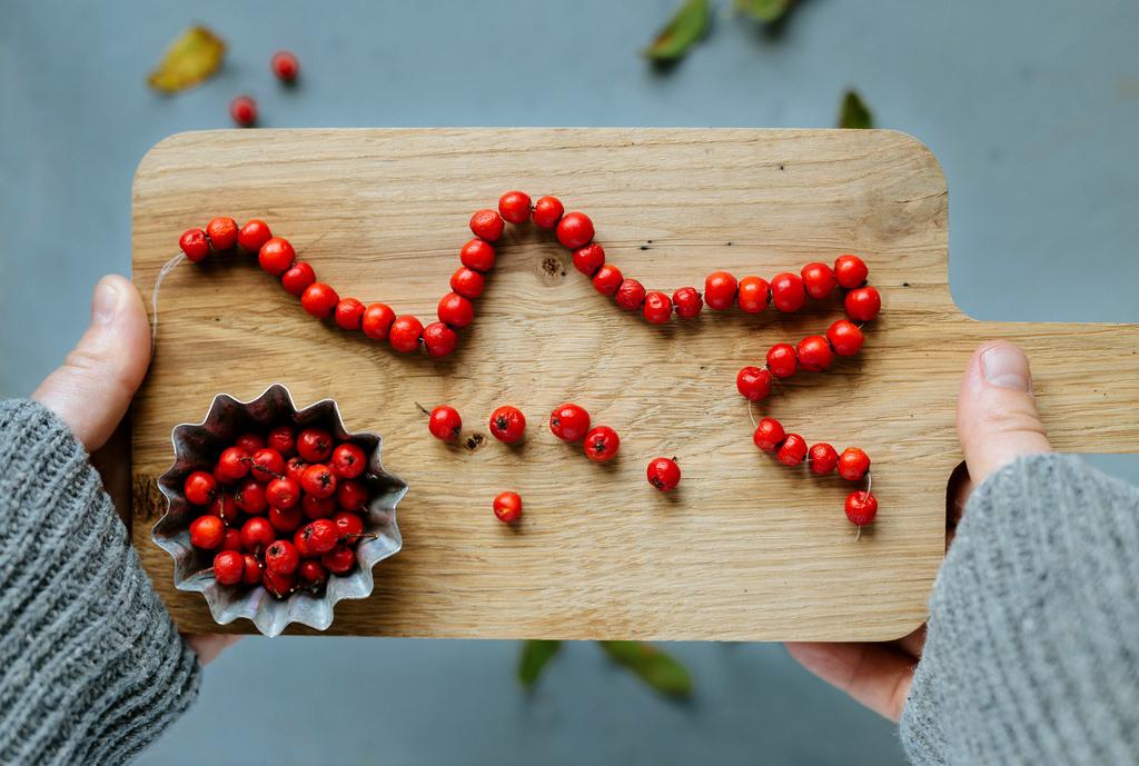 Rönnbärsslinga och foto  karinevelina.se