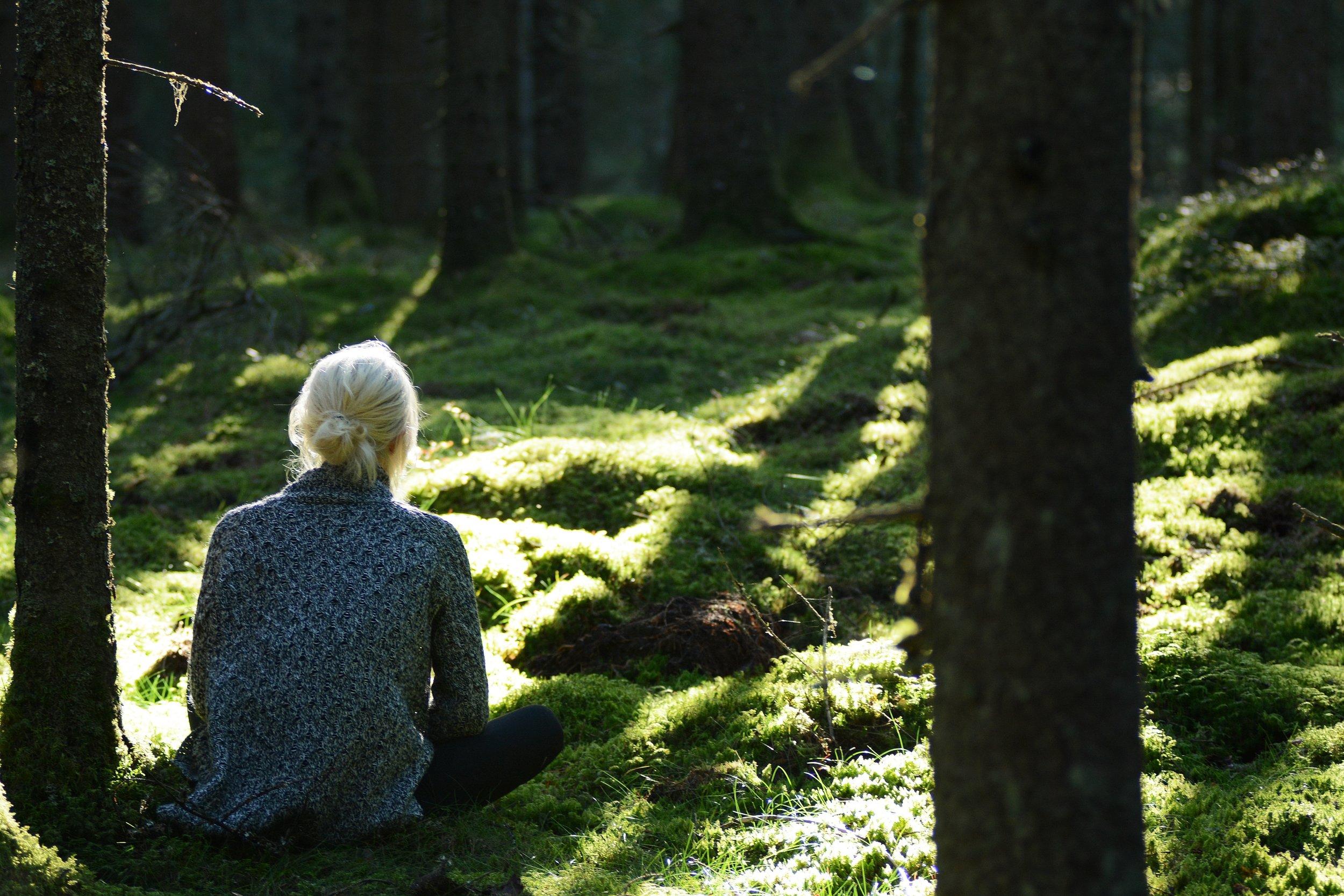 Närvaro i skogen